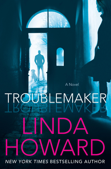Troublemaker - A Novel - cover