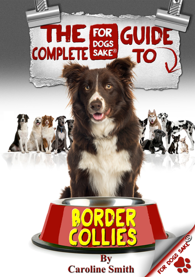 The Complete Guide to Border Collies - cover