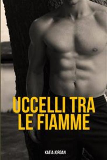 Uccelli Tra Le Fiamme - cover