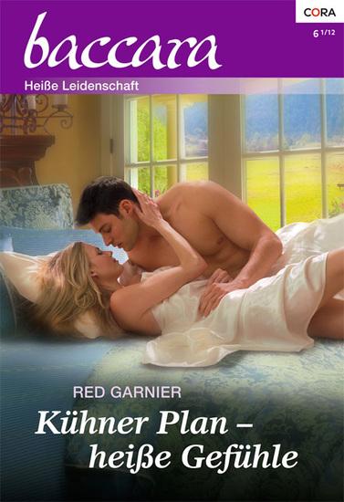 Kühner Plan - heiße Gefühle - cover