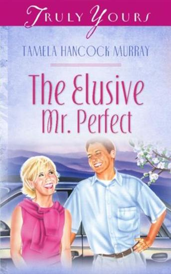 Elusive Mr Perfect - cover