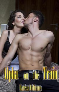 Sold To The Werewolf (BBW Paranormal Erotic Romance - Alpha Mate)