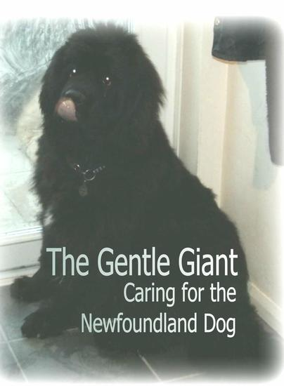The Gentle Giant: Caring for the Newfoundland Dog - cover
