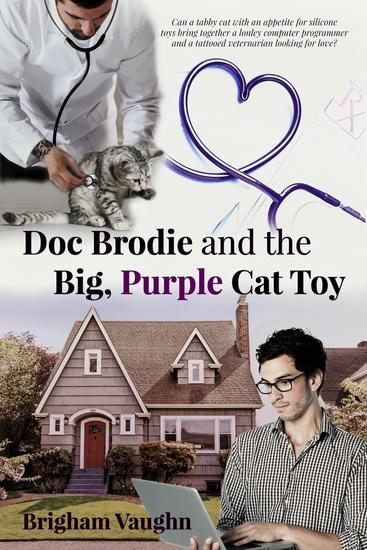 Doc Brodie and the Big Purple Cat Toy - cover