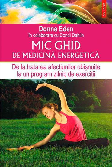 Mic ghid de medicină energetică De la tratarea afecțiunilor obișnuite la un program zilnic de exerciții - cover