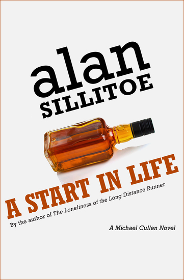 A Start in Life - A Novel - cover