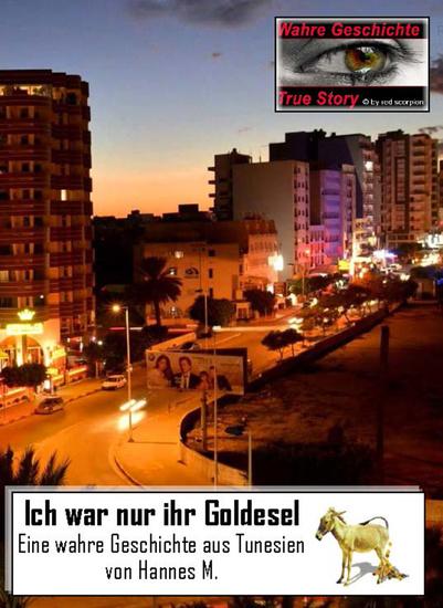Ich war nur ihr Goldesel - Eine wahre Geschichte aus Tunesien - cover