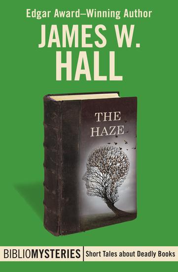The Haze - cover