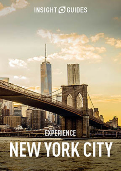 Insight Guides Experience New York City (Travel Guide eBook) - cover