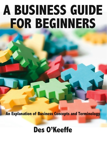 A Business Guide for Beginners - cover