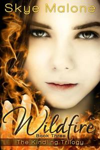 Wildfire - The Kindling Trilogy #3
