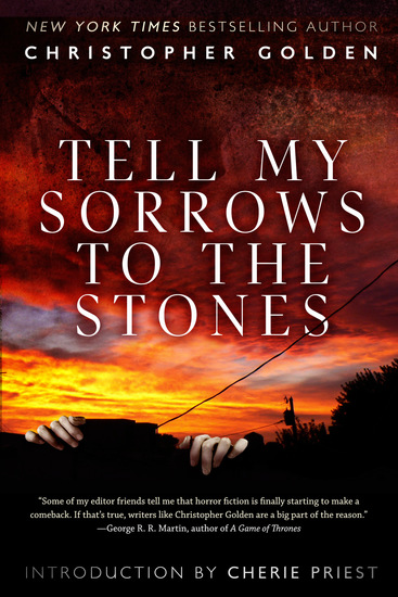 Tell My Sorrows To The Stones - cover