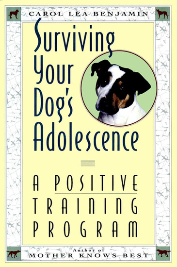 Surviving Your Dog's Adolescence - A Positive Training Program - cover