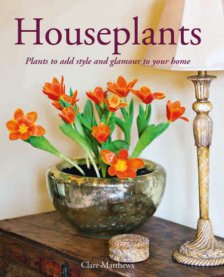 Houseplants - Plants to Add Style and Glamour to Your Home - cover