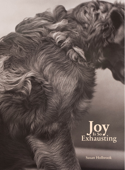 Joy Is So Exhausting - cover
