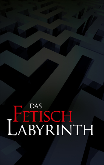 Das Fetischlabyrinth - 16 bizarre S M-Storys - cover