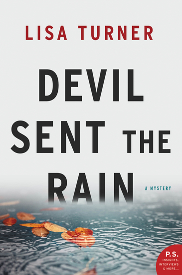 Devil Sent the Rain - A Mystery - cover