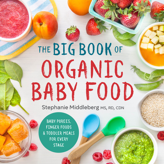 The Big Book of Organic Baby Food - Baby Purées Finger Foods and Toddler Meals For Every Stage - cover