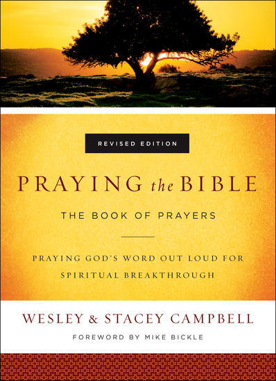 Praying the Bible - The Book of Prayers - cover