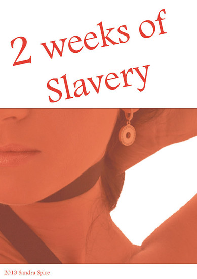 2 weeks of slavery - Cheating will be brutally punished - cover