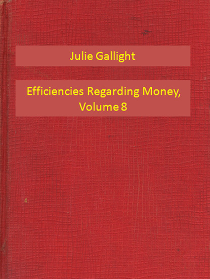 Efficiencies Regarding Money Volume 8 - cover