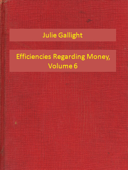 Efficiencies Regarding Money Volume 6 - cover
