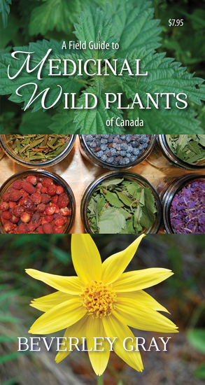 A Field Guide to Medicinal Wild Plants of Canada - cover