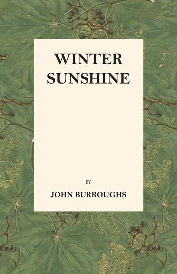 Winter Sunshine - cover