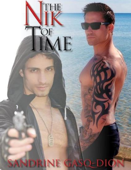 The Nik Of Time - The Assassin Shifters #17 - cover