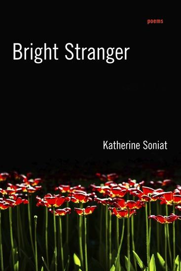 Bright Stranger - Poems - cover