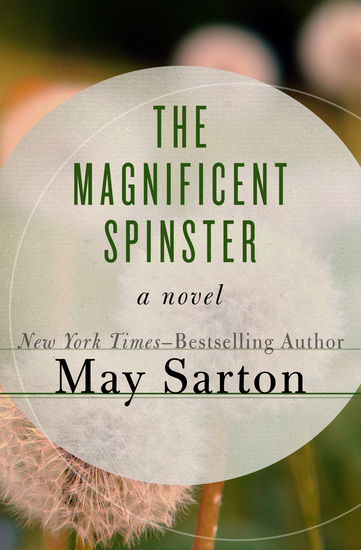The Magnificent Spinster - A Novel - cover