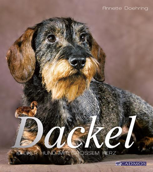 Dackel - Kleiner Hund mit großem Herz - cover