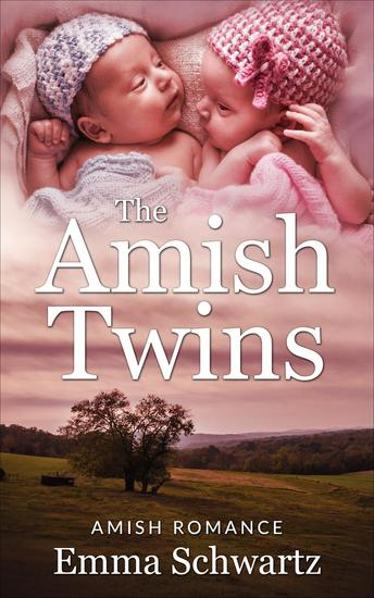 The Amish Twins Boxed Set - The Amish Twins - cover