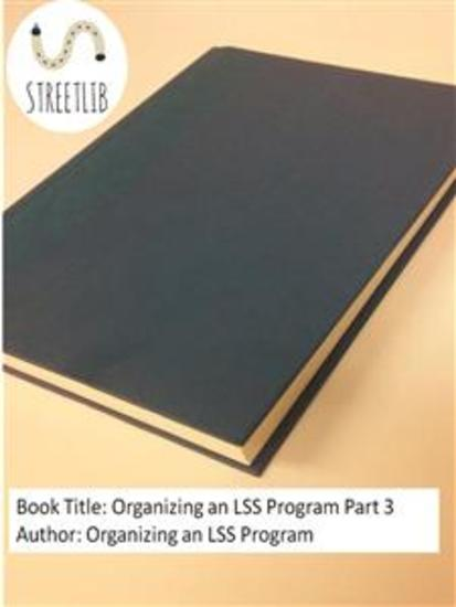 Organizing an LSS Program Part 3 - cover