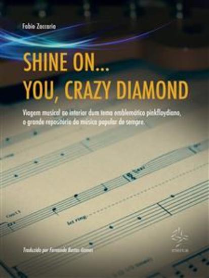 Shine On You Crazy Diamond - cover