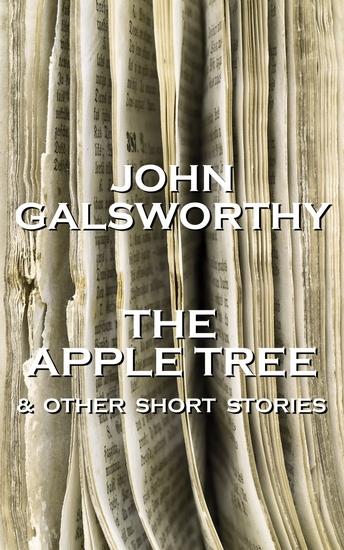 j galsworthy the broken boot
