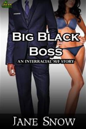 Big Black Boss (Interracial MF Erotica) - cover