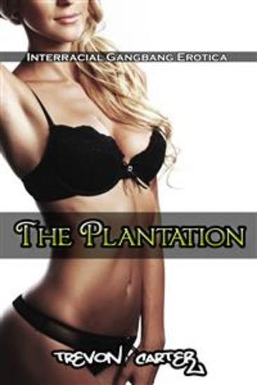 The Plantation (Interracial Gangbang Erotica) - cover