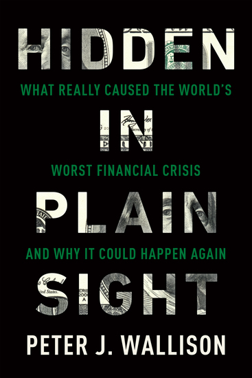 Hidden in Plain Sight - What Really Caused the World's Worst Financial Crisis—and Why It Could Happen Again - cover