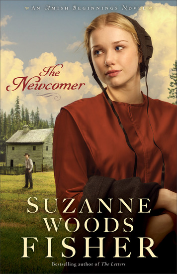The Newcomer (Amish Beginnings Book #2) - cover