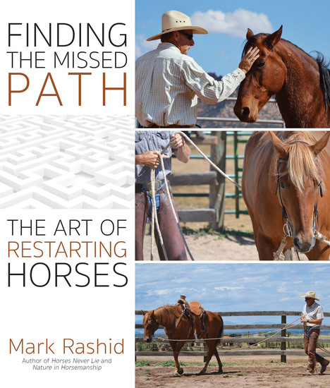 Finding the Missed Path - The Art of Restarting Horses - cover