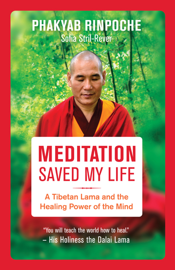 Meditation Saved My Life - A Tibetan Lama and the Healing Power of the Mind - cover