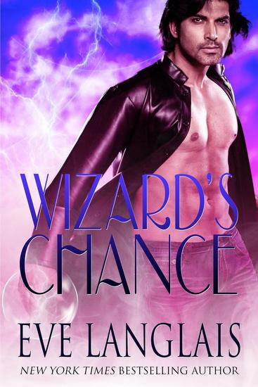 Wizard's Chance - The Realm #1 - cover