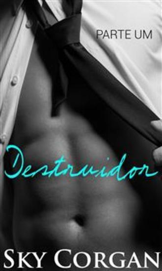Destruidor - cover