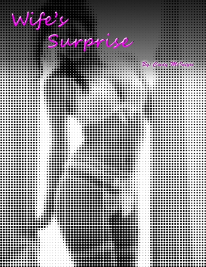 Wife's Surprise - cover