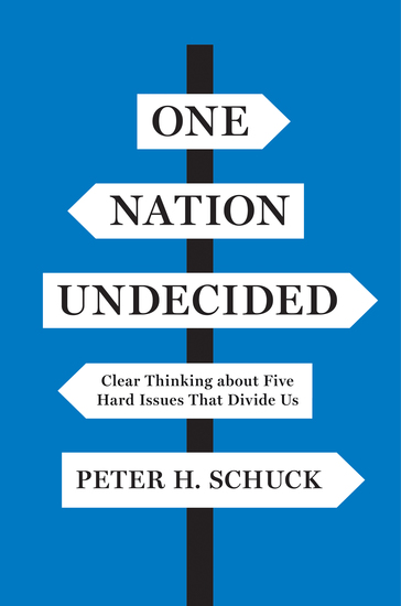 One Nation Undecided - Clear Thinking about Five Hard Issues That Divide Us - cover