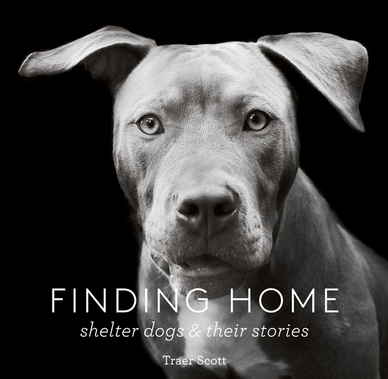 Finding Home - Shelter Dogs and Their Stories - cover