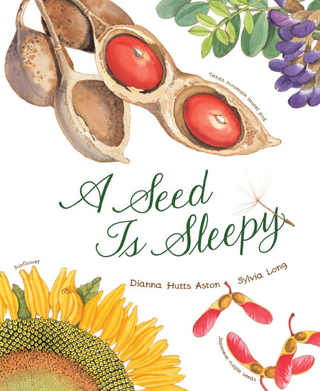A Seed Is Sleepy - cover
