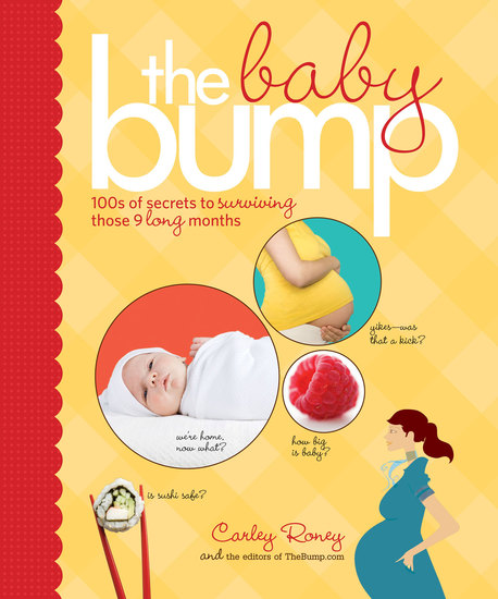 The Baby Bump - 100s of Secrets to Surviving Those 9 Long Months - cover