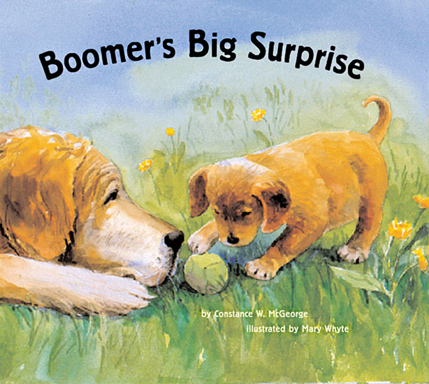 Boomer's Big Surprise - cover